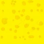 FOND_verso_sans-texte_web